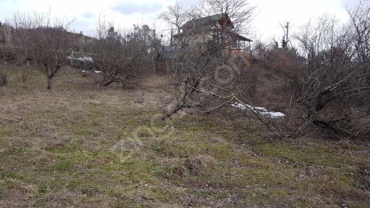UZMANLAR'dan Satılık Bahçe 2214 m2 Kocaeli Karamürsel Akçat Ky - undefined