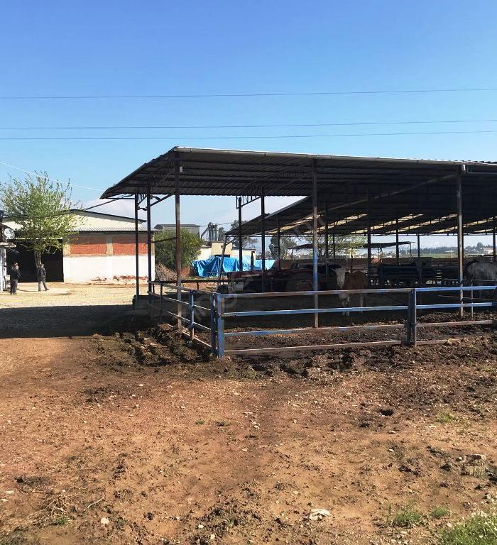Mykanguru'dan Satılık 8854 M² Hayvan Çiftliği Tarla Kadiköy