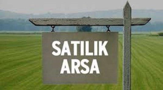 İzmir, Torbalı, Karakuyu Köyü, Satılık ZEYTİNLİK - undefined
