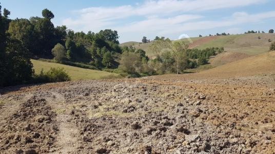 Kocaeli Karamürsel Çamdibi Çiftlik Mah. Satılık Tarla 1251 m2