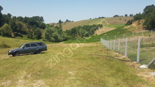 Kocaeli Karamürsel Çamdibi Çiftlik Mah. Satılık Tarla 1251 m2 - Arsa