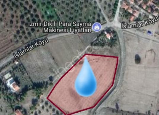 Dikili İslamlar'da Satılık Zeytinlik - Harita