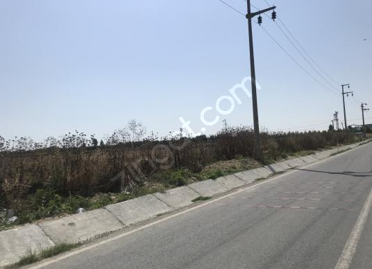 4300 square meters Private Use For Sale in Çatalca, İstanbul - undefined