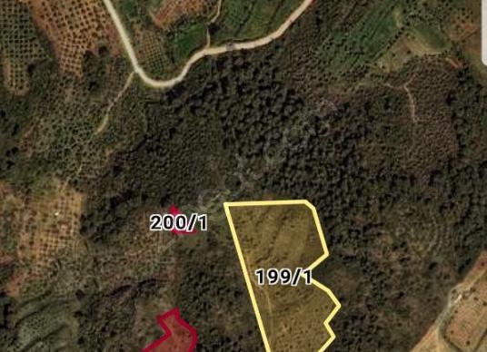 şirince köyüne yakın yatırıma uygun arazi - undefined