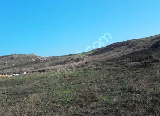 Seferihisar Tepecik'te Satılık Çok Amaçlı - Arsa