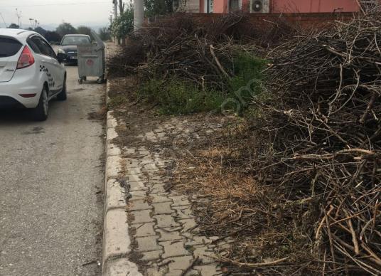 Bayındır Çırpı da köşe 357m2 konut imarlı arsa