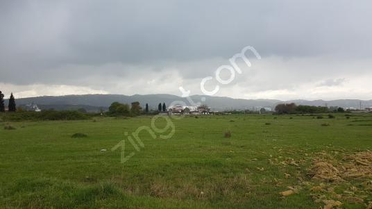 Satılık Tarla 13300 M2 Yalova Altınova Subaşı Bld.Tersane Civarı