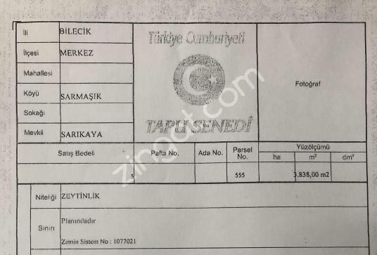 Bilecik Bayırköy ( Sarmaşık )'da Satılık Bağ 3838 m2