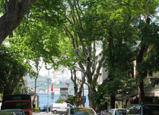 KUZGUNCUK PAŞA LİMANI CADDESİ ÜZERİNDE KİRACILI 25 M2 DÜKKAN - Sokak Cadde Görünümü