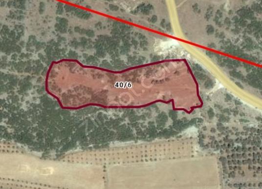 Ula demirtaş mahallesi 10 000 m2 imara açık arazi satılıktır.