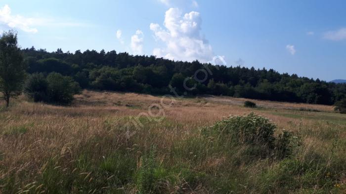 Doğa Gayrimenkul'den Abant Yolu Üzerinde Satılık Arazi