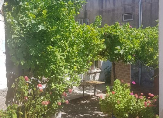 SELÇUK MÜZESİ ARKASINDA  MÜSTAKİL EV - Bahçe