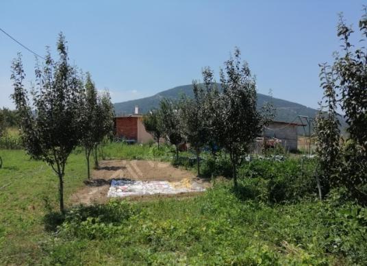 Menteşe Yeşilyurt'ta Satılık Bahçeli Ev