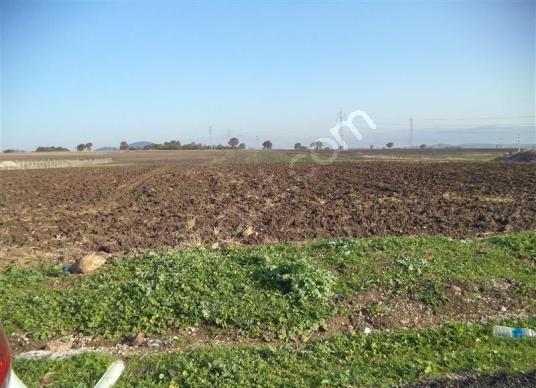 Bilecik Merkez Karaağaç Köyü 1.000m2 Fırsat Tarla 10.000 TL