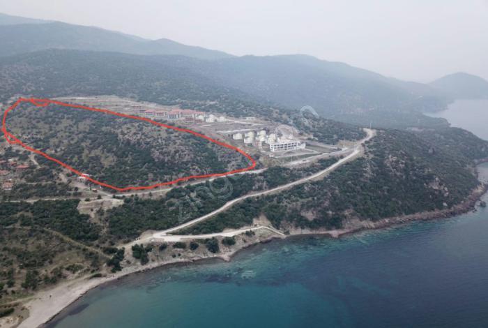 Izmir Dikili Hayit Koyun Da Turizm Imarli 53 000 M2 Kupon Arsa 2540256