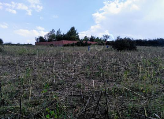 Edirne  Sazlıdere Karabayır TED Koleji Yanı Yatırımlık Arazi - Arsa