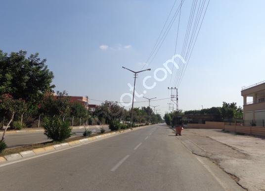 BESTE'DEN K.YÜZGEÇ BLV. T.ORHAN CAD. 1215 M2 İMARLI SATILIK ARSA - Sokak Cadde Görünümü