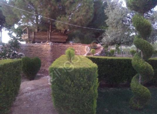 İZMİR TORBALI GOLD EMLAKTAN SATILIK BAÇELİ EV - Bahçe