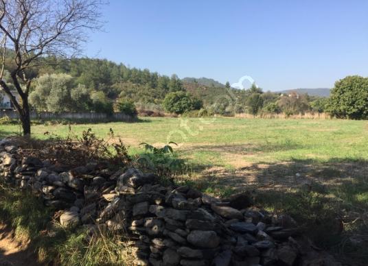 Muğla Yatağan Yeşilbağcılar'da 27000 m2 Satilik arazi - Arsa