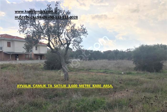 Ayvalık Camlık Ta Satılık 3,600 Metre Kare Arsa.