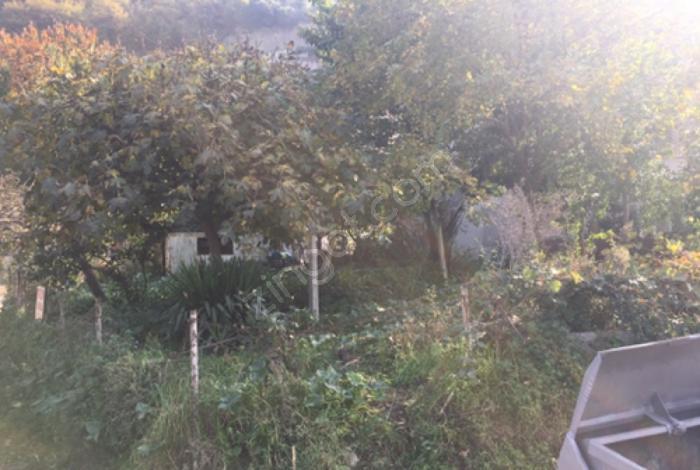 Trabzon Değirmenderenin Kenarında Satılık 175 M2 Arsa