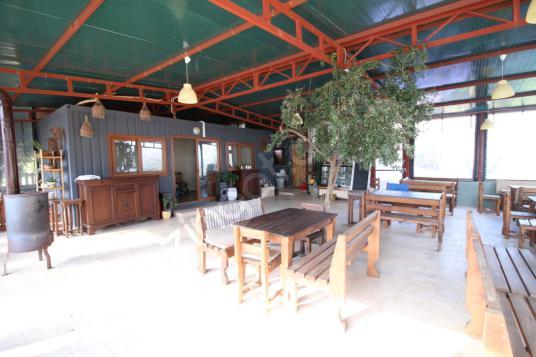 Yelki'de 5 Dönümde Devren Kiralık 1 Villa ve Kahvaltı Bahçesi