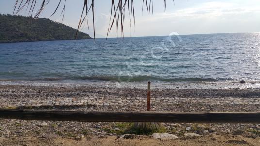 Milas Ören Bozalan'da Denize Sıfır Villa İmarlı 10570 m2 Arsa