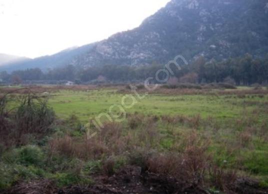 Turgut Köy Büyük 13 dönüm Arsa - Arsa