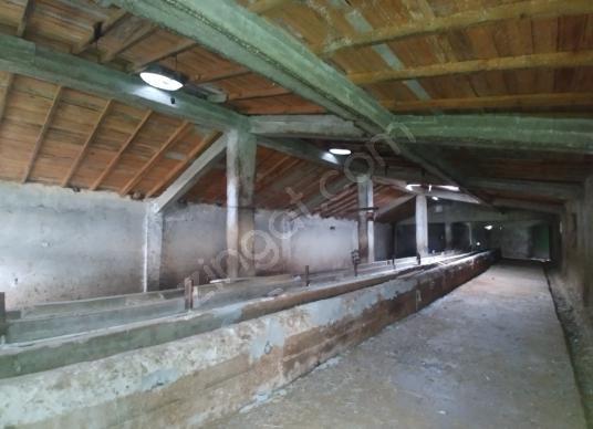 Silivri Büyük Kılıçlı'da Satılık Üretim Çiftliği