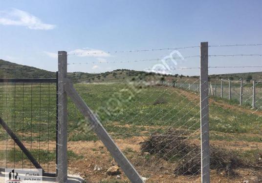 Tire Yeni oba da Verimli Köye Yakın Çitle Çevrili Tarla Kelepir - Bahçe