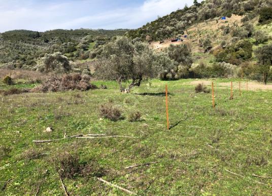 137- çok uygun hobi bahçesi - Arsa