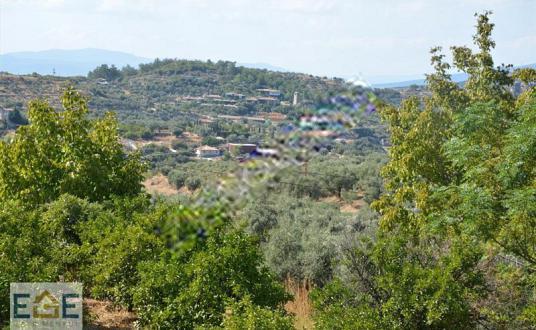 Efes Selçuk Şirincede Satılık Köy Manzaralı Bağ ve Bahçe - Manzara