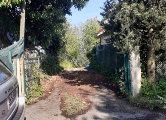 Beykoz Mahmutşevketpaşa'da Kiralık Villa