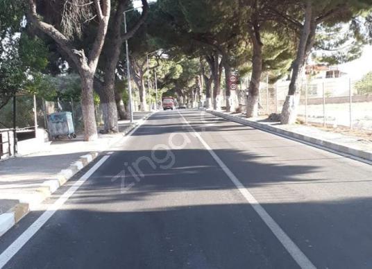 URLA İSKELE AĞAÇLI YOLDA SATILIK MÜKEMMEL ARAZİ - Sokak Cadde Görünümü