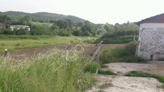 Çınarcık Çalıca Köyü'de Satılık Çiftlik 2000 metre kare yer - Arsa