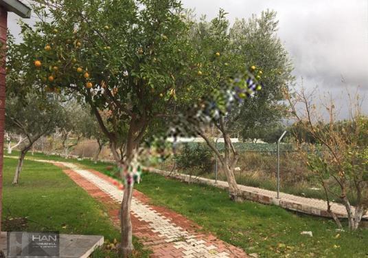 MENEMEN EMİRALEM'DE KUPON ARSA - Bahçe