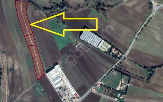 DENİZ EMLAK ARSA OFİSİNDEN KADIKÖY'DE 315m2 ÇAPLI HİSSELİ PARSEL - Harita