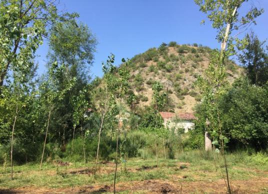 Taraklı Merkezde 2 tapu 1350 m2 yatırımlık bahçe