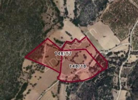 Çeşme Germiyan'da Satılık - Kat Planı