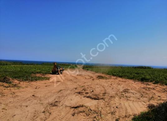 Bozcaada çayır plajı mevkii satılık 2400 M2 bağ - Arsa