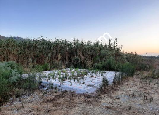 Ortaca Sarıgerme de 5 yıllık kiralık su kenarı arazi - Arsa