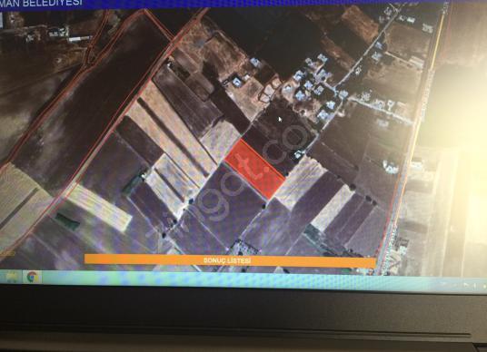 Çimen Küme Evleri bitişiği satılık 5973 m Tarla - Site İçi Görünüm