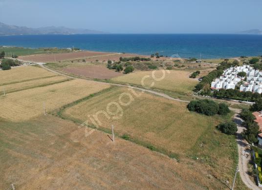 Datça Merkez, Burgaz'da denize 250m satılık 1749m2 otel arsası