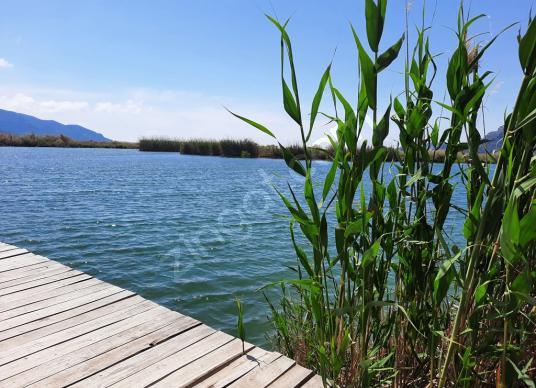 Muğla Dalyan da satılık kanala sıfır yatırıma uygun nar bahçesi - Manzara
