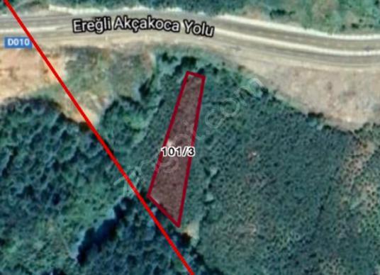 ZONGULDAK EREĞLİ YOL ÜZERİ 3000 metre kare ARSAMIZ SATILIKTIR - Arsa