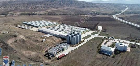Sivas Merkezde Ankara Yolu Üzeri SATILIK Büyükbaş Hayvan Çiftlği - Arsa