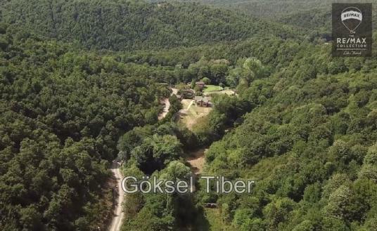 Mahmutşevketpaşada & Orman İçi 5000m2 Arsa İçinde Müstakil Ev % - Manzara