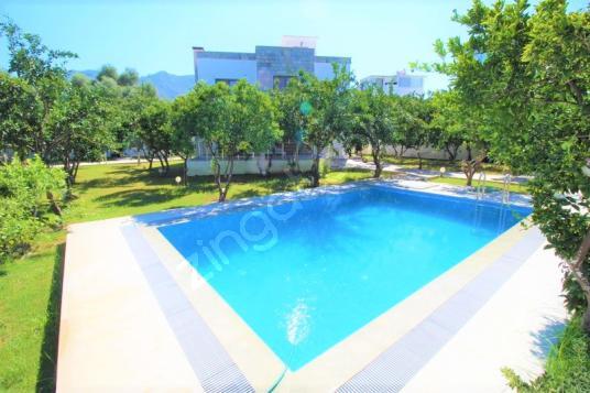 Türkbükü emlak tan özel havuzlu müstakil mandalina villa - Yüzme Havuzu