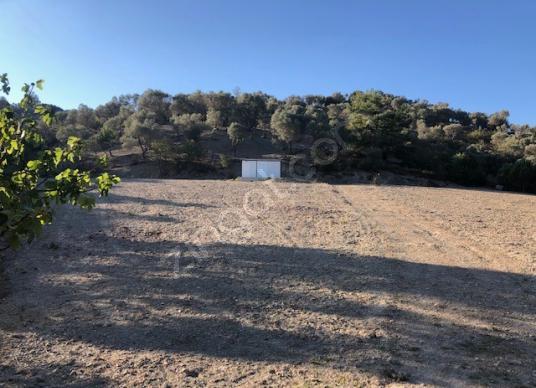 403-baraj manzaralı arazi - Arsa