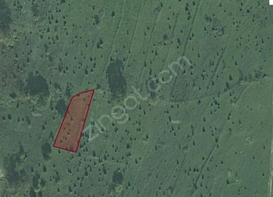 kocaeli kandıra satılık tarla çalyer köyü 678m2 müstakil tapulu - Harita